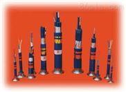 铠装阻燃电缆  WDZ-HYA53