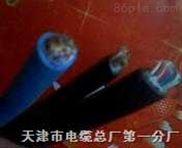 ZR-DJYPV钢丝铠装阻燃控制电缆计算机电缆现货销售