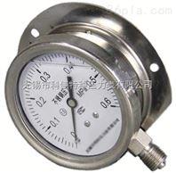 径向带边耐震压力表型号规格