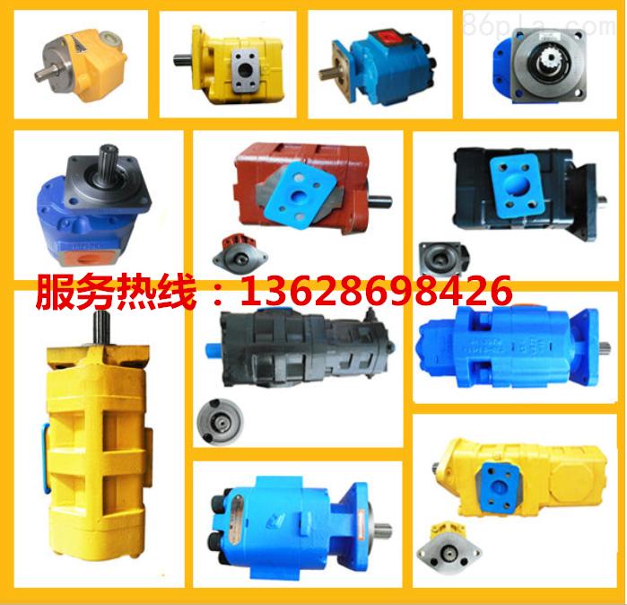 CBG3040/3040-139L齿轮泵